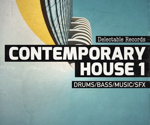 Loopmasters delectable records contemporary house 300