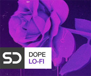 Loopmasters dl banner 300