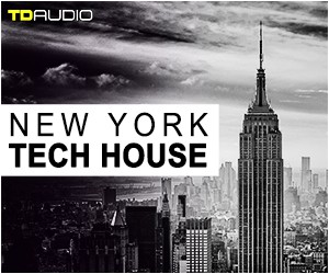 Loopmasters 5 new york tech house  serum. midi  loops  synth shots  bass shots  ana2 preset  tech house  house progressive  techno 300 x 250