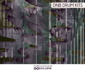 Loopmasters fa db dnb drum 300x250