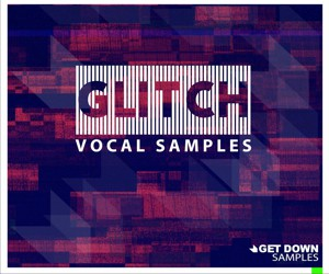 Loopmasters glitch vocals 300x250