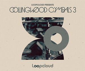 Loopmasters cs3 banner 300
