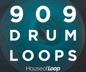 Loopmasters hl 909 drum loops 300x250
