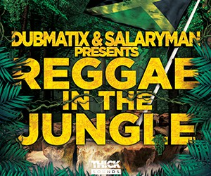 Loopmasters reggae in the jungle 300x250