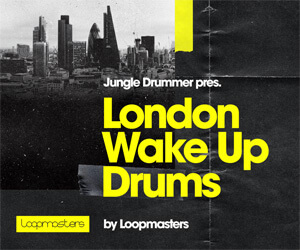 Loopmasters lwd banner 300