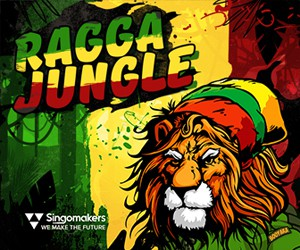 Loopmasters singomakers ragga jungle 300 250