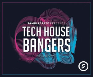 Loopmasters samplestate tech house bangers 300x250