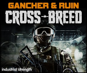 Loopmasters 5 gancher and ruin crossbreed hardcore drum n bass industrial hardstep dnb acid drums bass leads fx tekstep 300 x 250