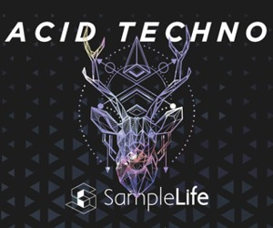 Loopmasters acid techno 300x250