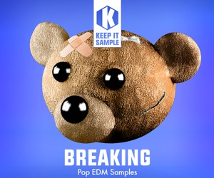 Loopmasters keep it sample   breaking artwork 300x250