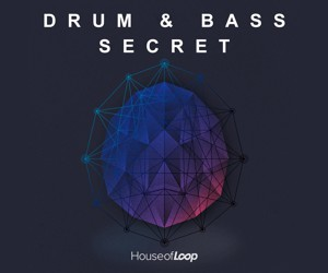 Loopmasters drum bass secret high quality 300x250