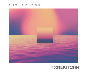 Loopmasters tone kitchn future soul 300x250