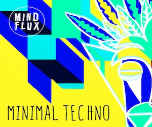 Loopmasters mind flux minimal techno 300x250