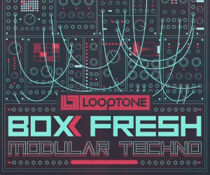 Loopmasters looptone box fresh modular techno 300x250