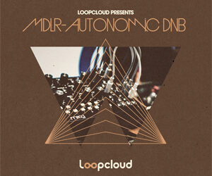 Loopmasters mdlr banner 300