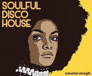 Loopmasters 5 soulful disco house  production kits disco  soul funk house nu disco 300 x 250