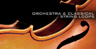 Orchestra and Classical String Loops