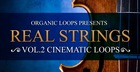 Real Strings Vol. 2 - Cinematic Loops