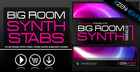 Big Room Synth Stabs 01