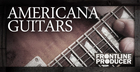 Americana Guitar Licks And Riffs
