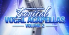 Iconical Vocal Acapellas Volume 2