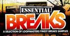 Essentials 09 - Breaks