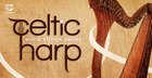 World String Series - Celtic Harp