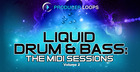 Liquid Drum & Bass: The MIDI Sessions Vol. 2