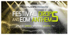 Festival Drops & EDM Anthems
