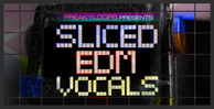 Sliced edm vocals 1000x512