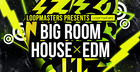 Big Room House & EDM