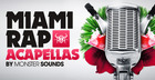 Miami Rap Acapellas