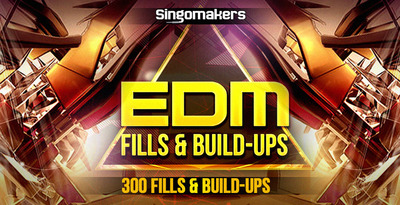 Edm fills   buildups 1000x512