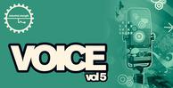 Voice5 1000x512
