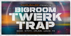 Bigroom Twerk & Trap