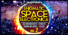 Enigmatic Space Electronica Vol. 2