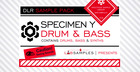 DLR - Specimen Y Drum & Bass