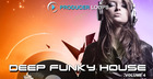 Deep Funky House Vol. 4