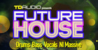 TD Audio Presents Future House