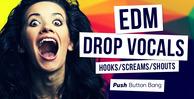 53 edm drop vocals 1000x512