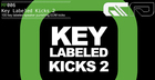Key Labeled Kicks 2