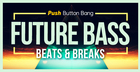 Future Bass:  Beats & Breaks