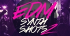 EDM Synth Shots 2