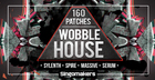 160 Wobble House Patches