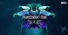 Transcendant Trap 2 by Paradigm Theorem