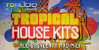TD Audio presents Tropical House Kits