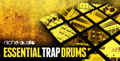 Niche essential trap drums 1000 x 512