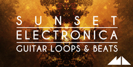 Sunset electronica banner