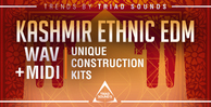 Triad sounds   kashmir ethnic edm 1000x512