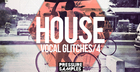 House Vocal Glitches 4